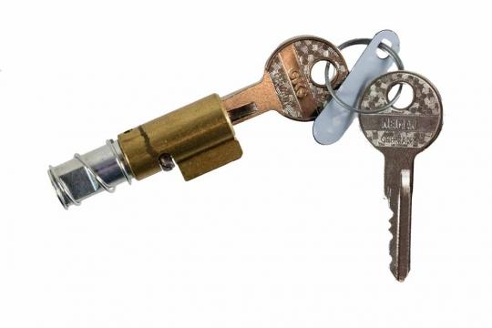 Steering Lock with Keys